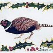 Holiday Pheasant Card Art Print