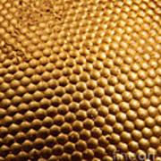 Honey Bee Eye Art Print