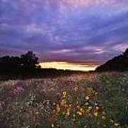 Hoosier Sunset - D007743 Art Print by Daniel Dempster