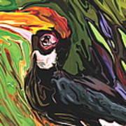 Hornbill Art Print