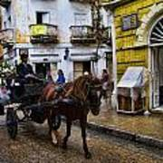 Horse And Buggy In Old Cartagena Colombia Art Print by David Smith