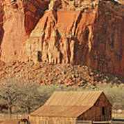 Horse Barn In Fruita Utah Art Print
