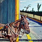 Horse In Malate Art Print