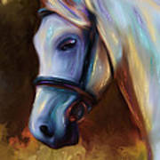 Horse Of Colour Art Print