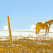 Horse Pasture Revblue Art Print