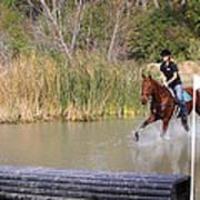 Horses Dont Like Water Art Print