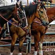 Horses Print by Michelle Frizzell-Thompson