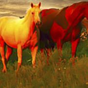 Horses Soft And Sweet Art Print