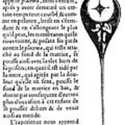 Human Sperm - 17th Century Art Print