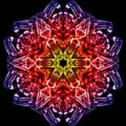 Humandala 2 Art Print by David Kleinsasser