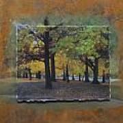 Humboldt Park Trees Layered Art Print
