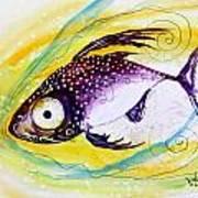 Hurricane Fish 7 Art Print