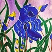 Hybrid Iris Art Print