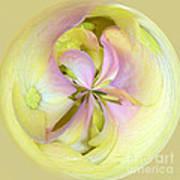 Hydrangea Circle Art Print