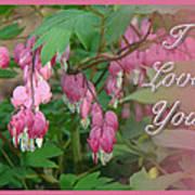 I Love You Greeting Card - Floral Bleeding Heart Art Print
