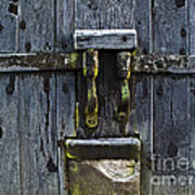 Ice Crystals On Wooden Gate Art Print