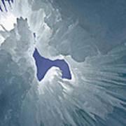 Ice Eagle Art Print