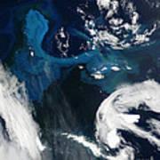 Icebergs Near South Georgia Island Art Print