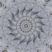 Icy Mandala 1 Art Print