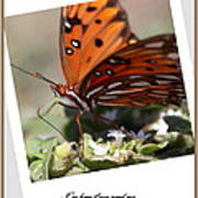 If You Need Me - Butterfly Art Print