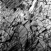 Immage In Stones Art Print