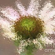 Impressionistic Echinacea Art Print