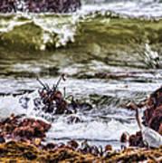In-coming Tide Art Print