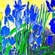 In The Iris Bed Art Print