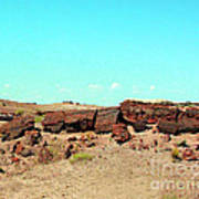 In The Petrified Forest In Arizona Art Print
