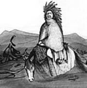 Indian Horse Art Print