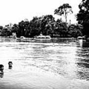 Indian River Art Print