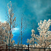 Infrared Summer Storm Art Print