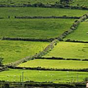 Irish Countryside Near Valenica Island Art Print