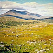 Irish Landscape 101 Art Print