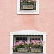 Ischia Windows Art Print