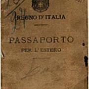 Italian Passport. Italian Passport Art Print