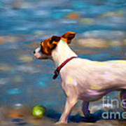 Jack At The Beach Print by Michelle Wrighton
