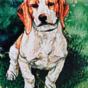 Jack Russell Woogle Art Print