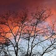 January Sunset Silhouette Art Print