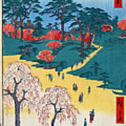 Japan: Temple Gardens Art Print