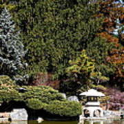 Japanese Friendship Garden . San Jose California . 7d12785 Art Print