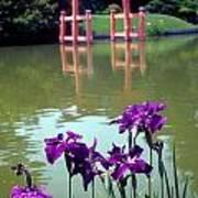 Japanese Garden Brooklyn New York Art Print
