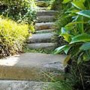 Japanese Garden Stone Steps Art Print