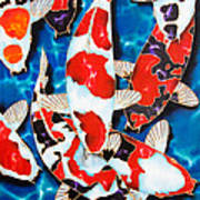 Japanese Koi Pond Art Print