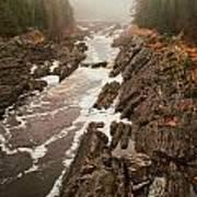 Jay Cooke Under Fog Art Print
