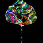 Jewel Tone Leaf Art Print by Ann Powell