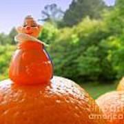 Juggling Oranges Art Print