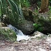 Jungle Falls Art Print