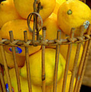 Just Lemons Art Print
