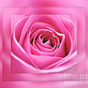 Just Pink Art Print